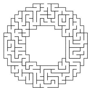 Donut shaped maze puzzle