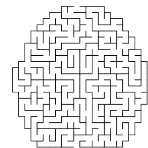 Egg shaped maze puzzle