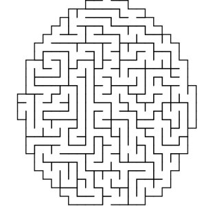 Ellipse shaped maze puzzle